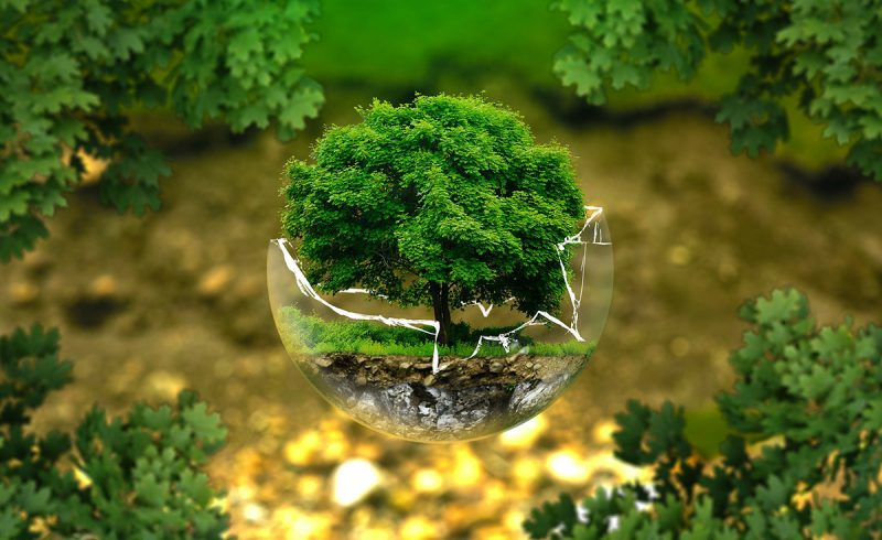 Ekoteologia